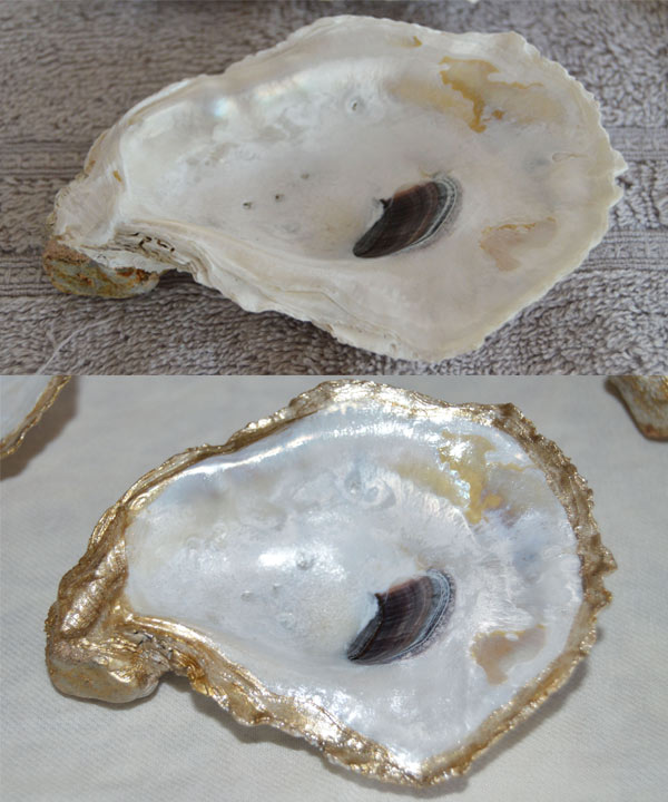 oyster-dish-1-before-after